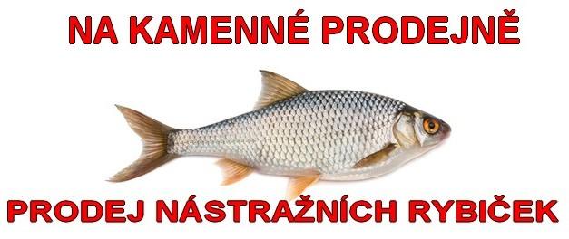 prodej nástražních rybek